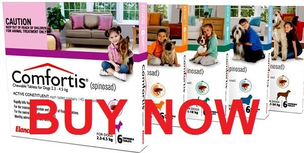 Buy Comfortis for dogs without prescription cheap