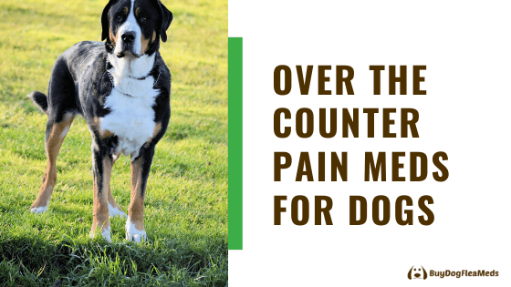 over the counter pain meds for dogs