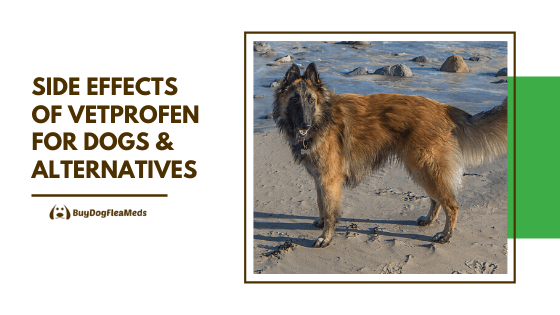 side effects of vetprofen for dogs & alternatives